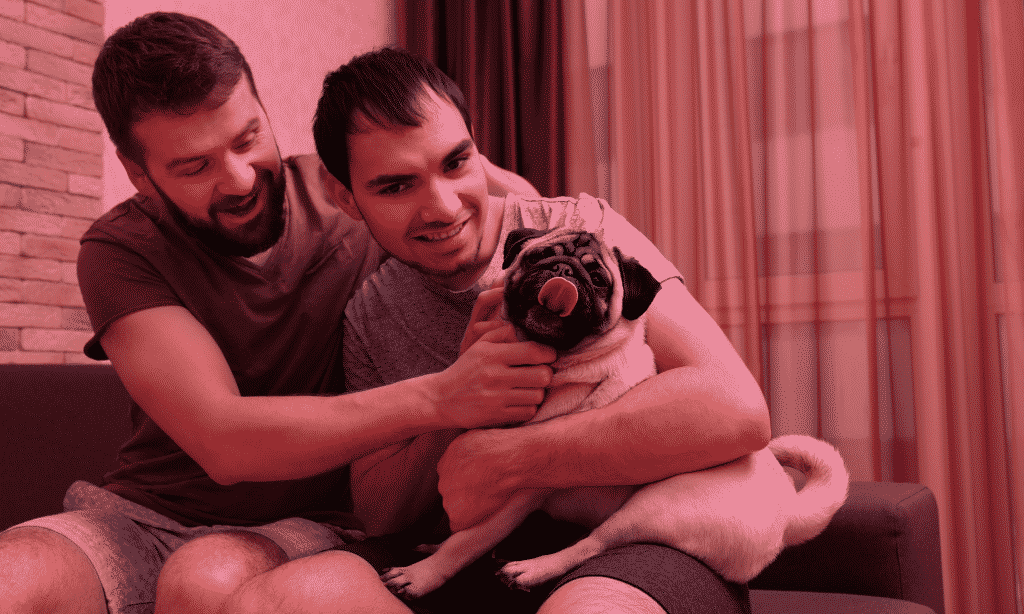 Two Gay men with a pug - LGBT Lawyers in Brighton and Hove. 3