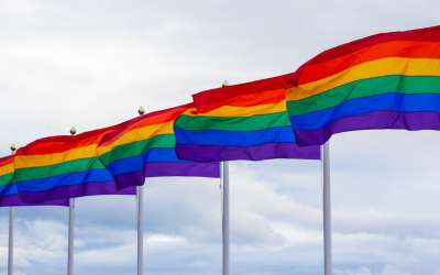 What is Section 28? A Brief History