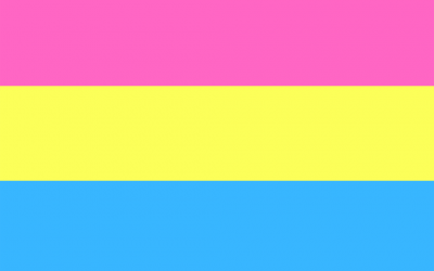 What Does Pansexual Mean?